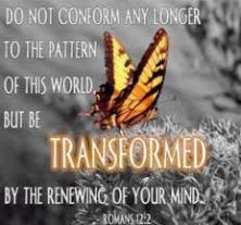 renew the mind
